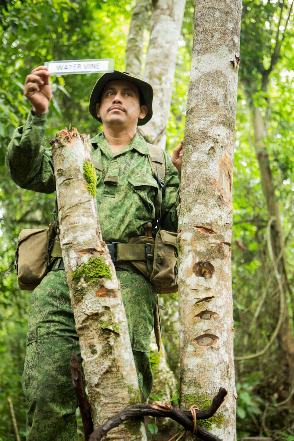 A Belize Defense Force soldier demonstrates water-trapping techniques during jungle warfare training in the Belizean rainforest. U.S. Marine Corps photo by Cpl Katelyn Hunter