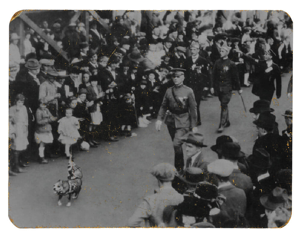 SGT Stubby leading a Legion parade. Photo courtesy National Museum of America, History Division of Armed Forces