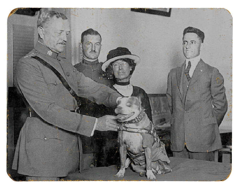 SGT Stubby being pinned with a medal by GEN John Pershing in 1921. Photo courtesy National Museum of America, History Division of Armed Forces